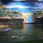 Adventure Aquarium, Camden, NJ (8)