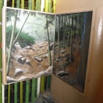 Denver-Zoo-Asian-Tropics-jewel-box-murals-Paul-Barker