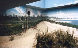 Shorebirds exhibit murals in the Aviary at Milwaukee County Zoo