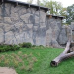 Brookfield-Zoo-Great-Bear-Wilderness-rocks-3-Paul-Barker