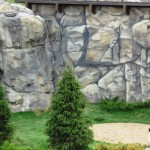 Brookfield-Zoo-Great-Bear-Wilderness-rocks-Paul-Barker