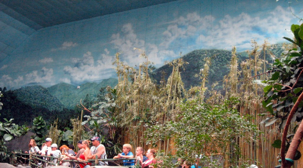 Murals at Brookfield Zoo's Tropic World by Paul Barker