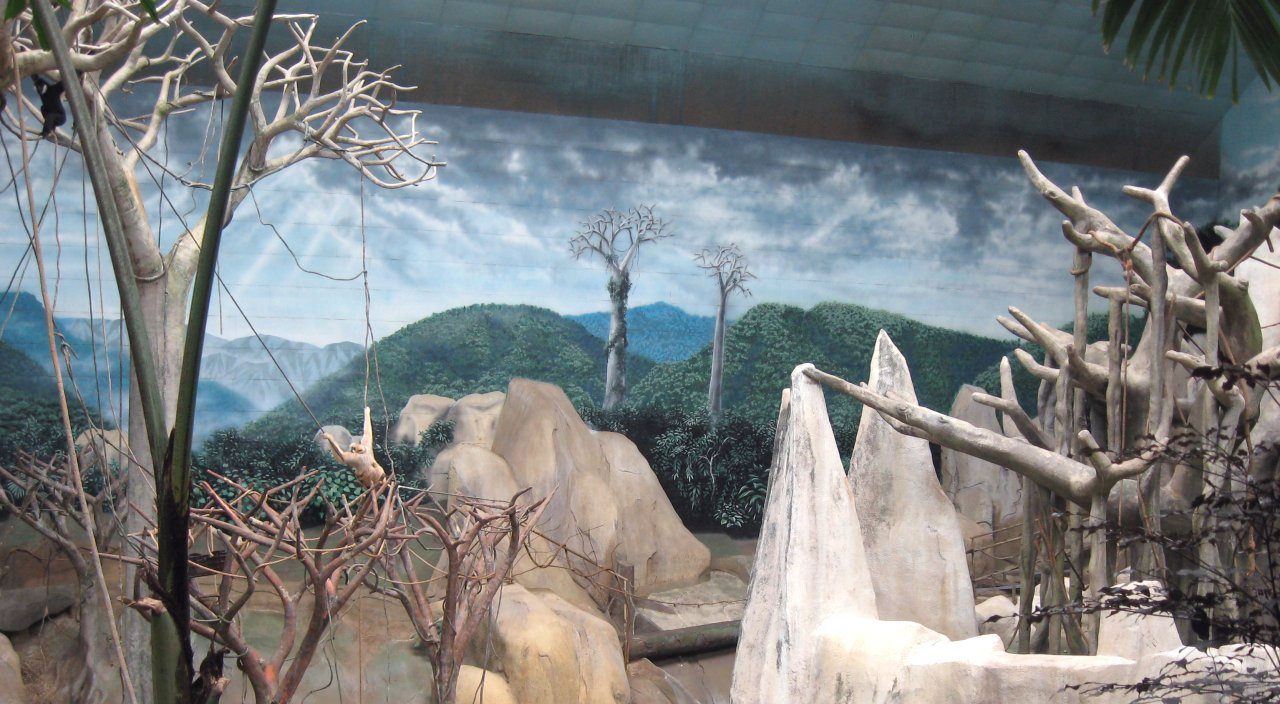 Brookfield-Zoo-Tropic-World-murals-Paul-Barker