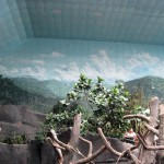Brookfield-Zoo-Tropic-World-skyscape-murals-Paul-Barker
