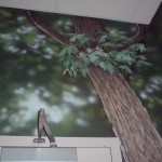 Cobbs-Creek-Center-forest-leaves-mural-Paul-Barker