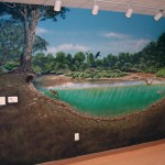 Cobbs-Creek-Center-pond-mural-by-Paul-Barker