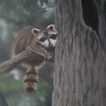 Cobbs-Creek-Center-raccoon-mural-Paul-Barker