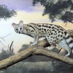 Erie-Zoo-genet-mural-Paul-Barker