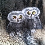 Henry-Vilas-Zoo-train-tunnel-murals-owls-Paul-Barker