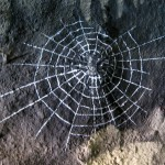 Henry-Vilas-Zoo-train-tunnel-murals-spider-web-Paul-Barker