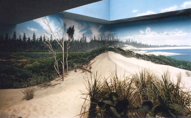 milwaukee-zoo-aviary-shore-birds-mural-paul-barker-640b