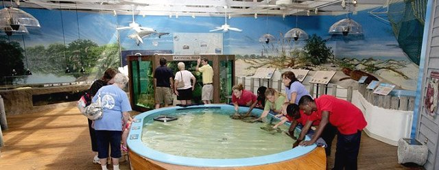 Murals at the Ponce Inlet Marine Science Center by Paul Barker