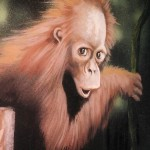 Mural-of-baby-orangutan-Rainforest-Cafe-Paul-Barker