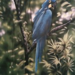 Mural-of-blue-parrot-Rainforest-Cafe-Paul-Barker