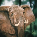 Mural-of-elephant-for-Rainforest-Cafe-by-Paul-Barker