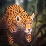 Jaguar stalking, mural by Paul Barker for Rainforest Cafe