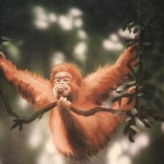 Mural-orangutan-swinging-on-vines-Paul-Barker