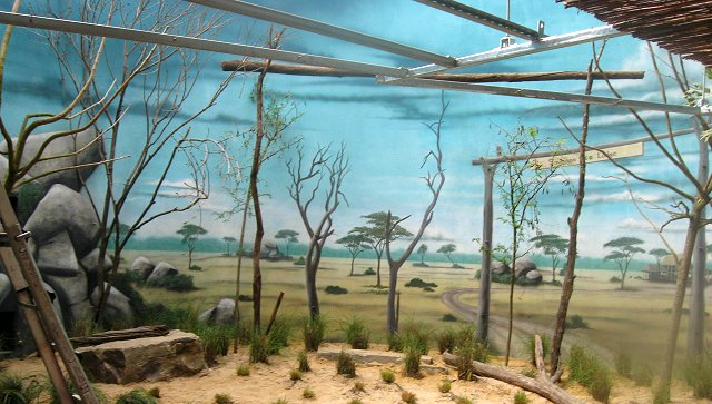 Philadelphia-Zoo-Aviary-Africa-savannah-murals-Paul-Barker