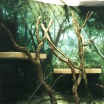 Philadelphia-Zoo-Rare-Animals-mural-2-Paul-Barker
