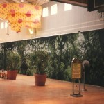Rainforest-Cafe-mall-wall-mural-Paul-Barker-Googleplex