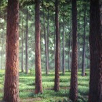 Tryon-Palace-pine-forest-mural10-Paul-Barker