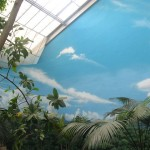 Brookfield-Zoo-free-flight-room-murals-by-Paul-Barker