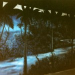 Luau-tent-night-scene-mural-at-Sea-World-Paul-Barker