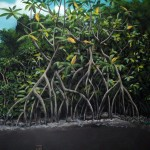 Smithsonian-Marine-Science-Center-Fort-Pierce-mangrove-murals-Paul-Barker