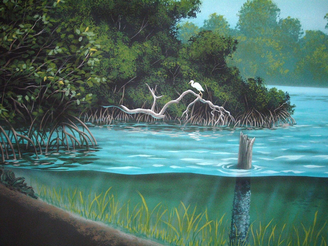 Smithsonian-Marine-Science-Center-Fort-Pierce-murals-by-Paul-Barker