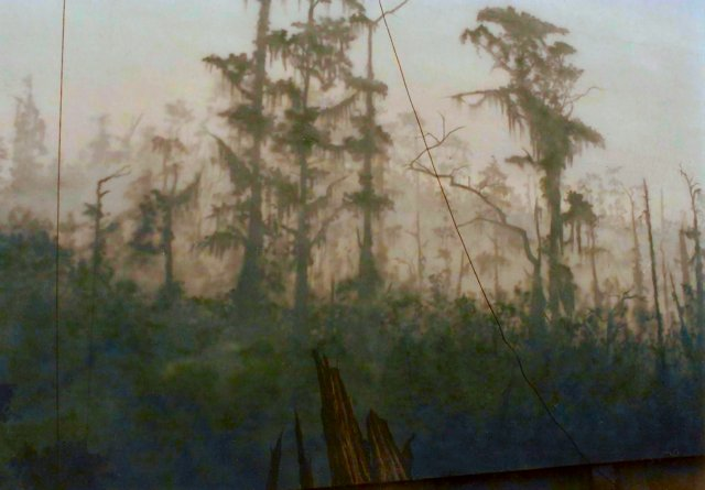 Tennessee-Aquarium-cypress-mural-by-Paul-Barker