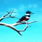 Pennypack-Environmental-Center-mural-kingfisher-detail-Paul-Barker