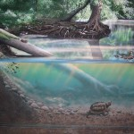 Wissahickon-Treehouse-murals-by-Paul-Barker-pond-detail