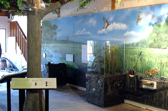 Prairie meadow mural by Paul Barker for Oxley Nature Center in Tulsa Oklahoma