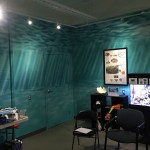 Smithsonian-Marine-Station-Discovery-Room-mural-by-Paul-Barker